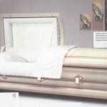 PACKAGE CASKET 20001